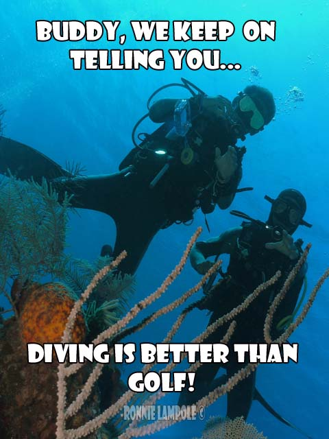 Diving Quotes-Me love diving