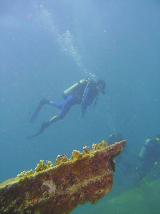 Scuba Diving-Diving_Up_The_Wall